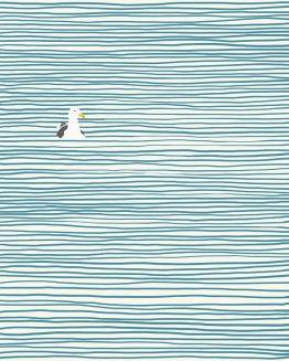 Seagull - Jorey Hurley